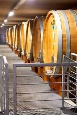 Produttori del Barbaresco aging room with Slavonian oak botte